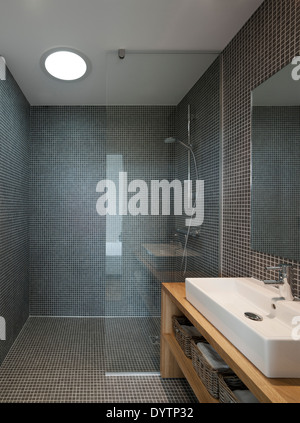 Washbasin and shower in modern bathroom, Maison Air et Lumiere, Verrieres-le-Buisson, France - Stock Photo