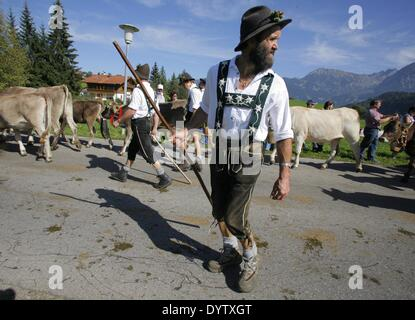 The Viehscheid (return of the cows from their summer pastures) - Stock Photo