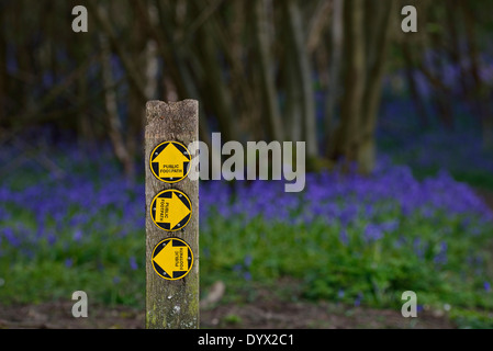 Public footpath sign at a bluebell wood. Guestling, Pett, East Sussex. UK - Stock Photo