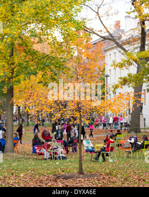 Harvard Yard, old heart of Harvard University campus, on a beautiful Fall day in Cambridge, MA, USA on November - Stock Photo