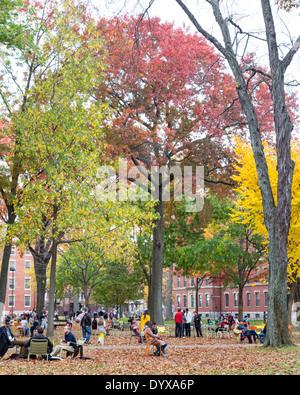 Harvard Yard, old heart of Harvard University campus, on a beautiful Fall day in Cambridge, MA, USA on November - Stock Photo