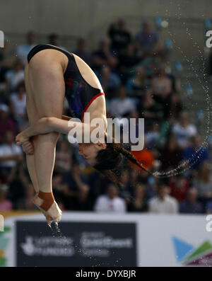 London, UK. 26th Apr, 2014. He Zi of China competes during the Women's 3M Springboard of FINA/NVC Diving World Series - Stock Photo