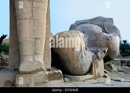 View to east of Ramesseum . Colossal granite head  of Ramses II° - Stock Photo