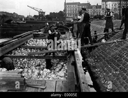 A shipload of cabbage in Berlin, 1914 - Stock Photo