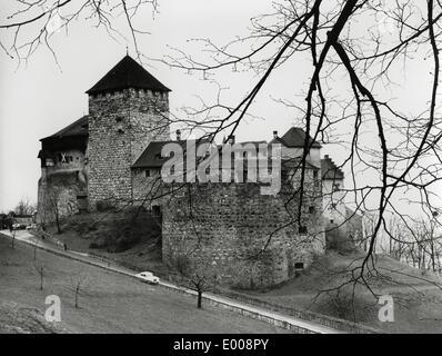 The Vaduz Castle in Liechtenstein - Stock Photo