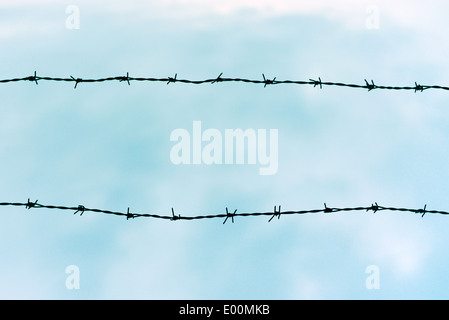 Silhouetted barbed wire against blue sky - Stock Photo