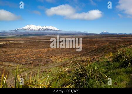 Mount Ruapehu and Mount Ngauruhoe viewed from Highway 1 Desert Road, Tongariro National Park, UNESCO World Heritage - Stock Photo