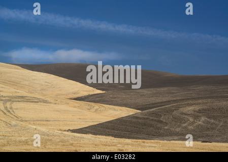 farmed land in Palouse county Washington State USA - Stock Photo