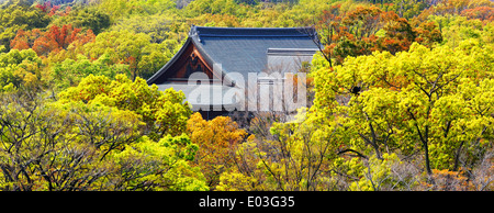 Temple in forest clsoe up - Stock Photo