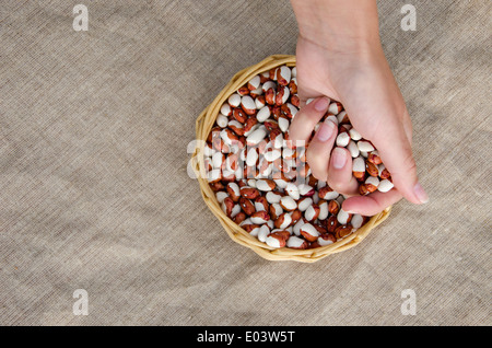 woman palmful of small dried beans over the wicker basket full of beans on linen background - Stock Photo