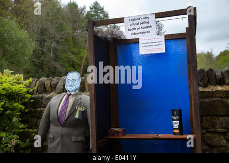 Wray, Lancaster, 1st May 2014. Alex Salmond effigy,statue, statuette, carving, sculpture, graven image, model, dummy, - Stock Photo