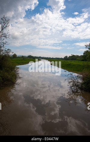 The River Adur flood plain on farmland near Partridge Green near Horsham in West Sussex UK - Stock Photo