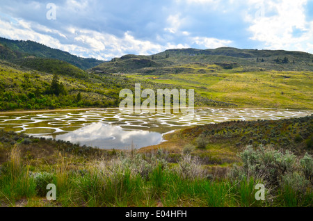 Spotted Lake, known for its unusual mineral deposits.  Located in the Okanagan area of British Columbia, near Osoyoos. - Stock Photo