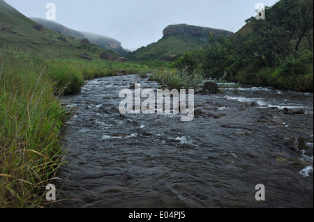 Giants Castle game reserve, KwaZulu-Natal, South Africa, Bushman's river flowing through Drakensberg, uKhahlamba - Stock Photo