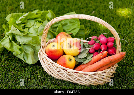 Fruit and vegetables in the basket with woman, Obst und Gemuese im Korb mit Frau - Stock Photo