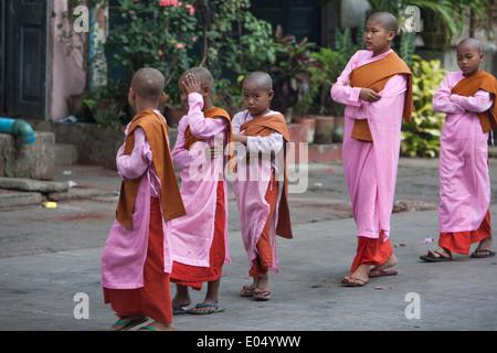 Novice nuns on morning alms round in Yangon - Stock Photo