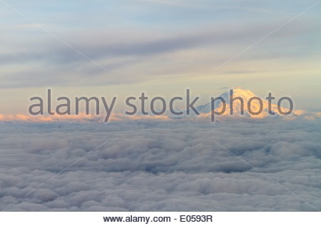 Mount Rainier At Sunset Above The Clouds - Stock Photo