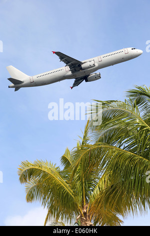 An airplane traveling between palm trees into vacation during a holiday - Stock Photo