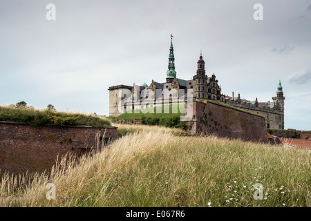 Kronborg Castle with grasses and wildflowers,  Helsingnor, Denmark - Stock Photo