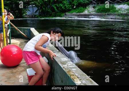 Dolphin show - QUISTOCOCHA - Zoological Park in IQUITOS. Department of Loreto .PERU - Stock Photo