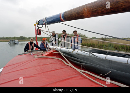 At the tiller of the historic Norfolk trading wherry Albion, sailing on the River Bure, Broads National Park - Stock Photo