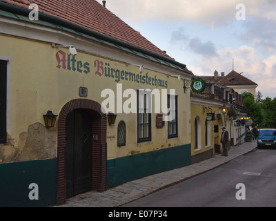 Restaurant and Heuriger in Grinzing Vienna Austria, a tavern type where you can taste the local wine - Stock Photo