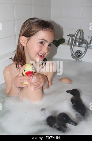Young girl having a bath with her real black cayuga pet ducklings Anas platyrhynchos domesticus and a rubber duck, - Stock Photo