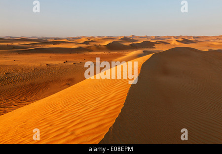 Sand dune landscape in Arabian desert. - Stock Photo