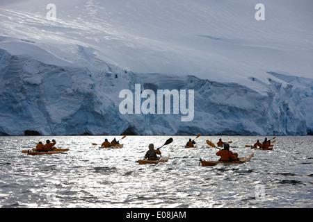 group of sea kayakers in port lockroy antarctica - Stock Photo