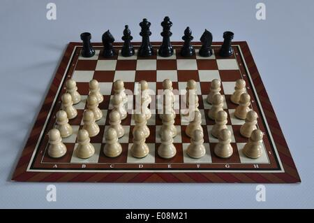 Illustration - Chess pieces stand on a chessboard in Germany, 16 January 2013. Many white pawns face a black king, - Stock Photo