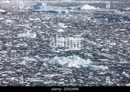 iceberg laden sea in the penola strait Antarctica - Stock Photo