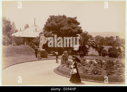 Botanical Gardens, Sydney [showing statue of Apollo Belvedere], c. 1900-1910 - Stock Photo
