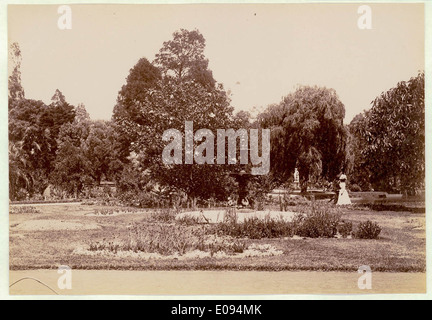 Botanical Gardens, Sydney, c. 1900-1910 - Stock Photo