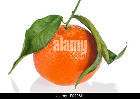 An orange lies on a white background. Symbolic photo fue healthy vitamins by fresh fruit, Eine Orange liegt auf - Stock Photo