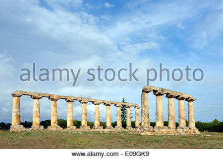 Italy, Basilicata, Province of Matera, Metaponto, view to row of columns of temple of Hera - Stock Photo