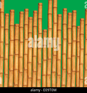 Bamboo sticks in front of green background - Stock Photo