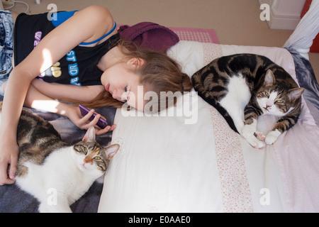 Teenage girl lying with cats, using smartphone - Stock Photo