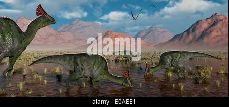 Olorotitan Duckbill Dinosaurs. - Stock Photo