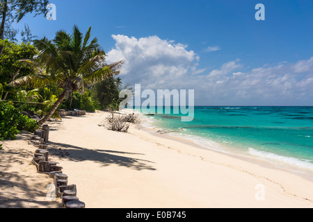Seychelles, Northern Coral Group, Denis Island, Private beach - Stock Photo
