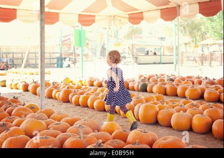 Girl running through pumpkins - Stock Photo