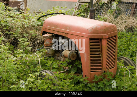old rusting tractor left in the undergrowth - Stock Photo