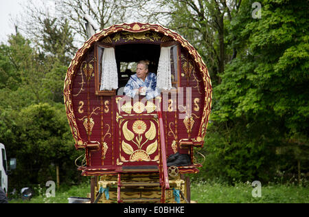 Woman leaning out of her caravan at the Gypsy Horse fair at Stow on the Wold on a very wet day - Stock Photo