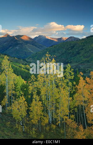 Mountains and aspens in fall, Gunnison National Forest, near Crested Butte, Colorado USA - Stock Photo