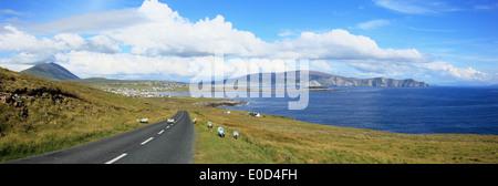 Sheep along the coast and crossing a road near Dooagh on Achill Island; County Mayo, Ireland - Stock Photo