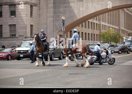 US Park Police Mounted Unit stopping street traffic - Washington, DC USA - Stock Photo