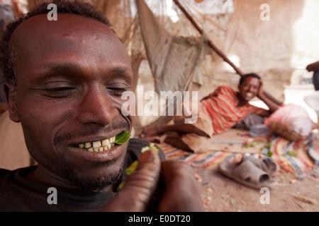 Khat user in Harar, Ethiopia. - Stock Photo
