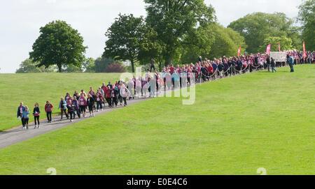 the 10th Pink Ribbon walk at Blenheim Palace, - Stock Photo