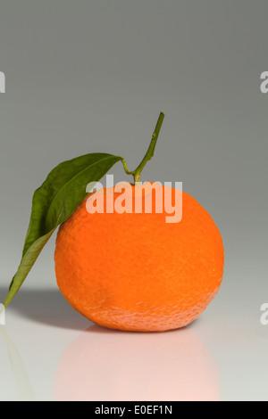 An orange lies on a white background. Symbolic photo for healthy vitamins by fresh fruit, Eine Orange liegt auf - Stock Photo