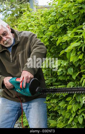 A senior man trimming a hedge. - Stock Photo