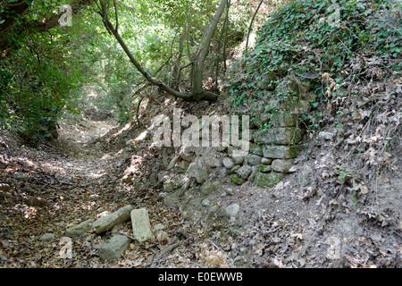 Dry stream or river bed near Katsivelos archaeological site Ancient Eleutherna Crete Greece This site located on - Stock Photo